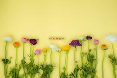 fundo flatlay do conceito da mola com flores fotografia de stock