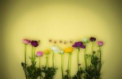 fundo flatlay do conceito da mola com flores foto de stock royalty free