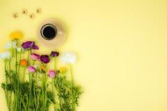 Fundo flatlay do conceito da mola com flores e xícara de café com palavra dos feijões e do café de café no fundo amarelo, vista s imagem de stock royalty free