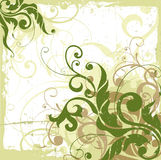 Fundo floral ilustração royalty free