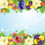 Fundo floral Imagens de Stock Royalty Free