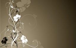 Fundo floral Fotografia de Stock Royalty Free