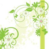 fundo floral abstrato Imagens de Stock