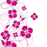 fundo floral abstrato Fotos de Stock Royalty Free