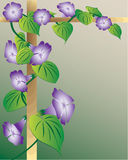 Fundo floral abstrato. Imagens de Stock Royalty Free