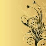 Fundo floral abstrato com espaço para o texto Foto de Stock Royalty Free