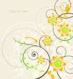 Fundo floral abstrato com lugar para o texto Imagem de Stock Royalty Free