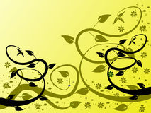 Fundo floral amarelo Foto de Stock Royalty Free