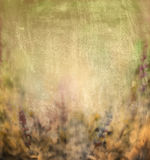 Fundo floral blured verde da natureza de Brown Imagens de Stock Royalty Free