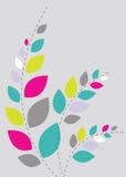 Fundo floral bonito brandamente na cor-de-rosa Imagens de Stock