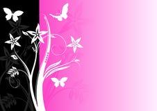 Fundo floral colorido Foto de Stock