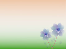 Fundo floral colorido abstrato. Imagens de Stock Royalty Free