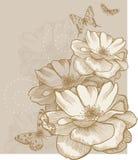 Fundo floral com borboletas e rosas, mão ilustração stock