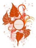 Fundo floral com frame Imagens de Stock Royalty Free