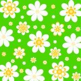 Fundo floral com margaridas. vetor Fotos de Stock