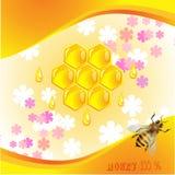 Fundo floral com mel Foto de Stock