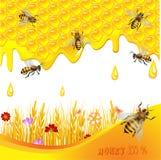 Fundo floral com mel Imagens de Stock