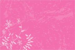 Fundo floral cor-de-rosa Fotos de Stock