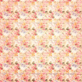 Fundo floral cor-de-rosa botânico das rosas do estilo sujo antigo do vintage na madeira Imagens de Stock