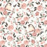 Fundo floral da aquarela com um pássaro 16 do cutу Imagens de Stock