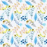 Fundo floral da aquarela do teste padrão sem emenda ilustração stock