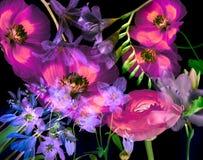 Fundo floral da arte Foto de Stock Royalty Free