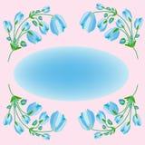 Fundo floral das papoilas azuis Foto de Stock Royalty Free