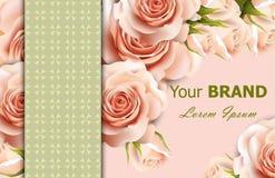 Fundo floral das rosas delicadas do vetor Decoração abstrata dos elementos designs florais 3d realísticos Fotografia de Stock Royalty Free