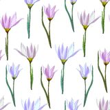 Fundo floral de flores do rosa da mola Textura clara delicada para o projeto dos cart?es, telhas, fundamento, convites, ilustração royalty free