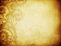 Fundo floral de Grunge com espaço para o texto Imagens de Stock
