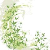 Fundo floral do grunge do vetor ilustração do vetor