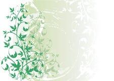 Fundo floral do grunge do vetor ilustração royalty free