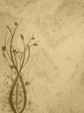 Fundo floral do ouro Fotografia de Stock Royalty Free
