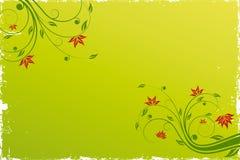 Fundo floral do rolo Fotos de Stock Royalty Free