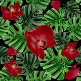 Fundo floral do vetor do verão As folhas de palmeira tropicais e as orquídeas vermelhas florescem o teste padrão sem emenda ilustração royalty free