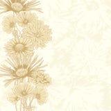 Fundo floral do vintage Imagem de Stock