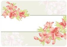 Fundo floral do vintage Imagens de Stock Royalty Free