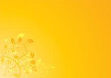 Fundo floral mínimo Imagens de Stock Royalty Free