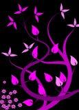 Fundo floral magenta Foto de Stock
