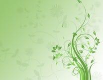 Fundo floral no verde ilustração royalty free