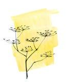 Fundo floral pintado sumário Fotos de Stock Royalty Free