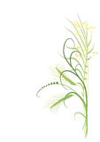 Fundo floral, prado Foto de Stock