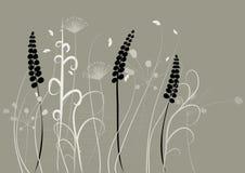 fundo floral, prado Fotos de Stock Royalty Free