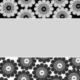 Fundo floral preto e branco Fotos de Stock