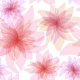 Fundo floral sem emenda Fotografia de Stock