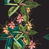Fundo floral sem emenda bonito do teste padrão com o elastica tropical do ficus, folhas de palmeira e as flores escuros e brilhan Imagens de Stock