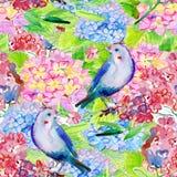 Fundo floral sem emenda com flores e pássaros Fotografia de Stock