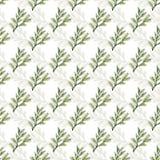 Fundo floral sem emenda de ramos variáveis para o projeto ilustração stock