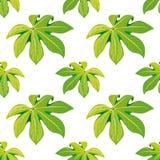 Fundo floral sem emenda do teste padrão das folhas de palmeira tropicais para a finalidade decorativa e da exposição Ideal para o Foto de Stock Royalty Free