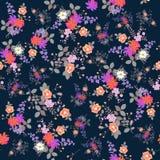Fundo floral sem emenda exótico Ramalhetes das flores do jardim isoladas em escuro - fundo azul Cópia para a tela ilustração do vetor